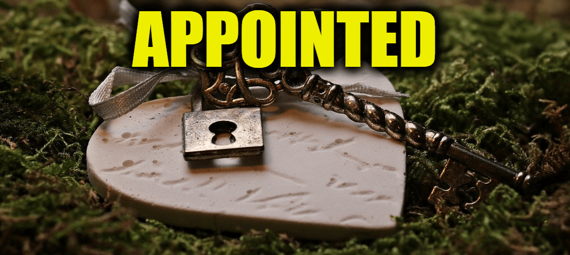 """Use Appointed in a Sentence - How to use """"Appointed"""" in a sentence"""
