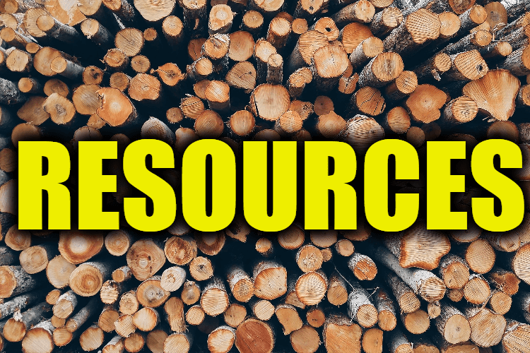 "Use Resources in a Sentence - How to use ""Resources"" in a sentence"