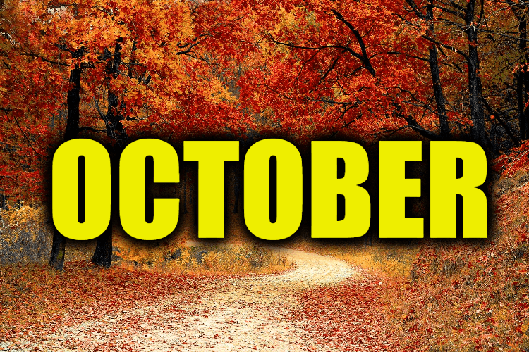 """Use October in a Sentence - How to use """"October"""" in a sentence"""