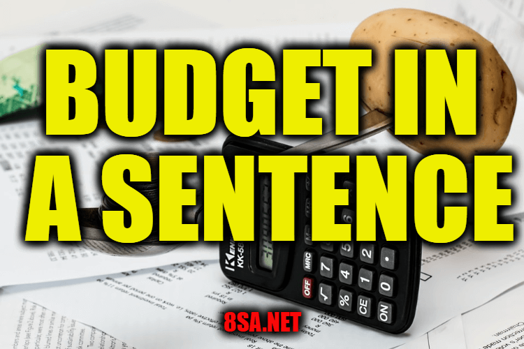 Budget in a Sentence