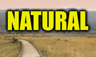 "Use Natural in a Sentence - How to use ""Natural"" in a sentence"