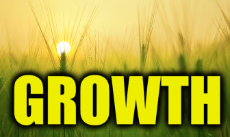 "Use Growth in a Sentence - How to use ""Growth"" in a sentence"