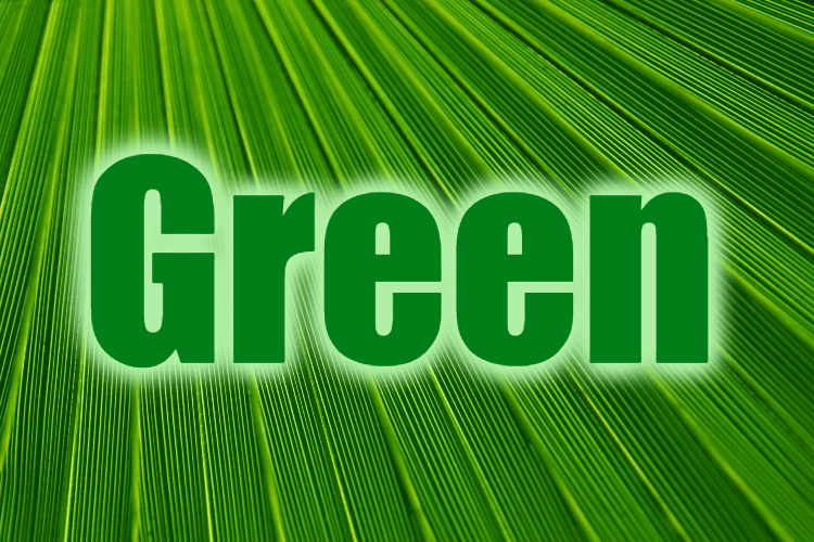 """Use Green in a Sentence - How to use """"Green"""" in a sentence"""