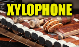 """Use Xylophone in a Sentence - How to use """"Xylophone"""" in a sentence"""