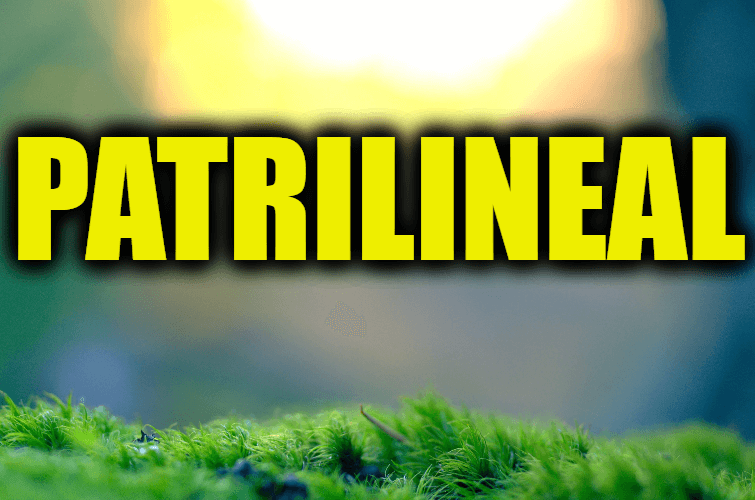 "Use Patrilineal in a Sentence - How to use ""Patrilineal"" in a sentence"