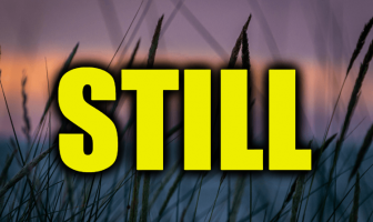 "Use Still in a Sentence - How to use ""Still"" in a sentence"