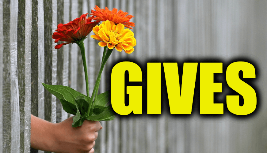 "Use Gives in a Sentence - How to use ""Gives"" in a sentence"