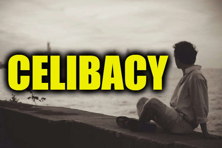 """Use Celibacy in a Sentence - How to use """"Celibacy"""" in a sentence"""