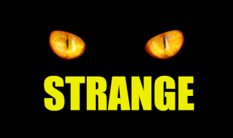 "Use Strange in a Sentence - How to use ""Strange"" in a sentence"
