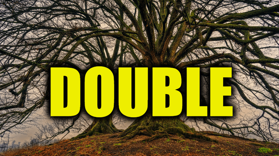 "Use Double in a Sentence - How to use ""Double"" in a sentence"