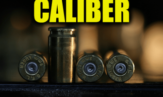 "Use Caliber in a Sentence - How to use ""Caliber"" in a sentence"