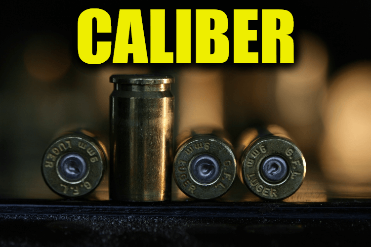 """Use Caliber in a Sentence - How to use """"Caliber"""" in a sentence"""