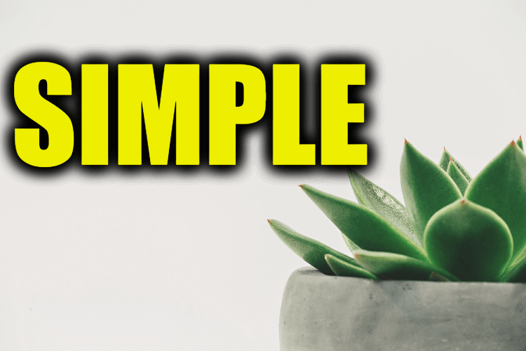 """Use Simple in a Sentence - How to use """"Simple"""" in a sentence"""