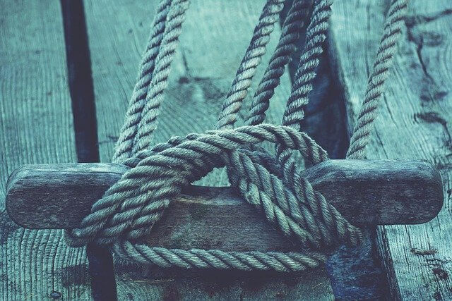 """Use Cordage in a Sentence - How to use """"Cordage"""" in a sentence"""