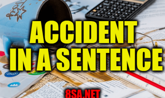 Accident - Sentence for Accident - Use Accident in a Sentence