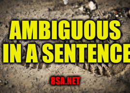 "Use Ambiguous in a Sentence – How to use ""Ambiguous"" in a sentence"