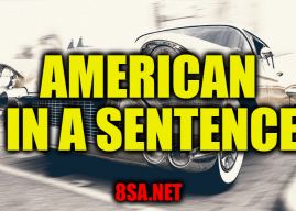 American in a Sentence