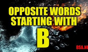Opposite Words Starting With B