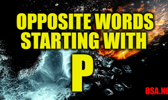 Opposite Words Starting With P