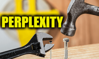"Use Perplexity in a Sentence - How to use ""Perplexity"" in a sentence"