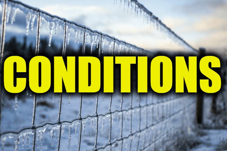 """Use Conditions in a Sentence - How to use """"Conditions"""" in a sentence"""