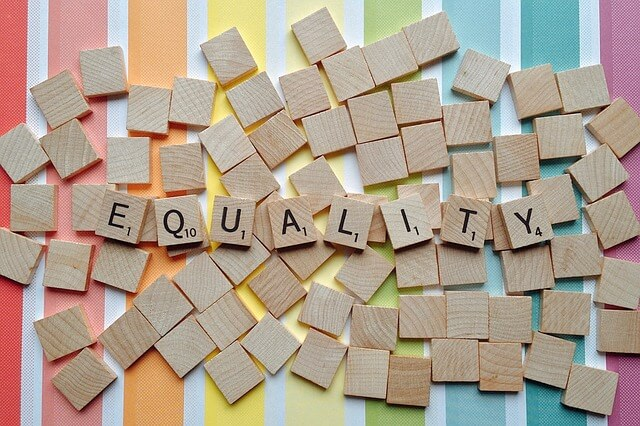 """Use Equality in a Sentence - How to use """"Equality"""" in a sentence"""