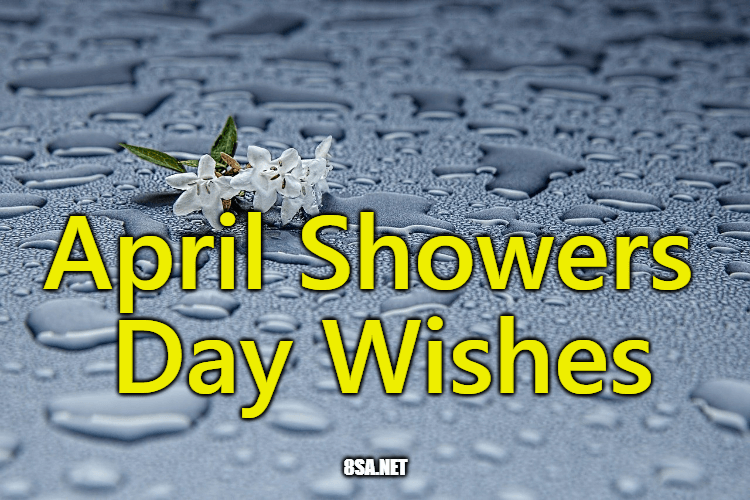 April Showers Day Wishes (Sample Messages and Wishes)