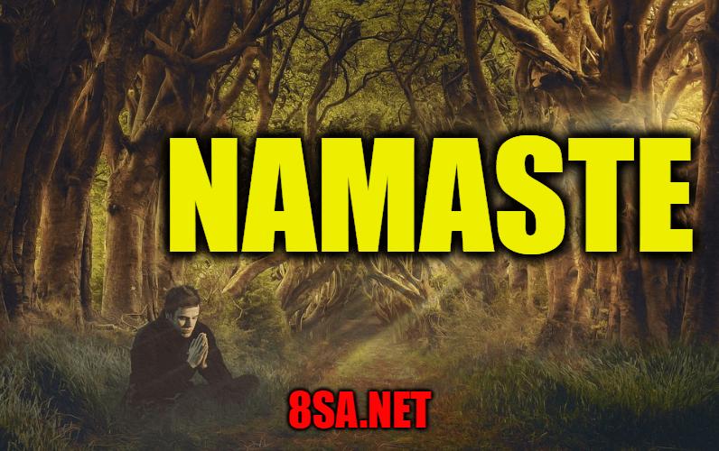Namaste in a sentence