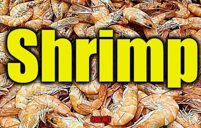 Shrimp - Sentence for Shrimp - Use Shrimp in a Sentence