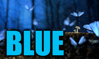 """Use Blue in a Sentence - How to use """"Blue"""" in a sentence"""