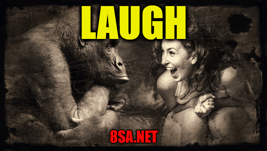 Laugh - Sentence for Laugh - Use Laugh in a Sentence