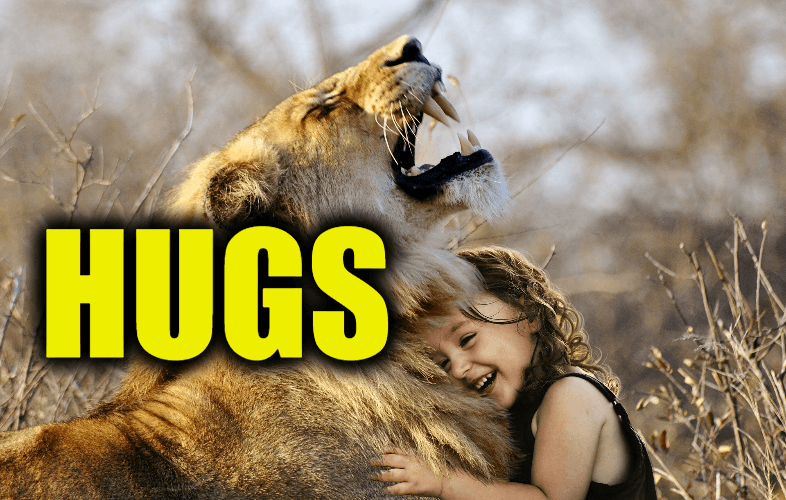 """Use Hugs in a Sentence - How to use """"Hugs"""" in a sentence"""
