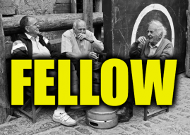 "Use Fellow in a Sentence – How to use ""Fellow"" in a sentence"
