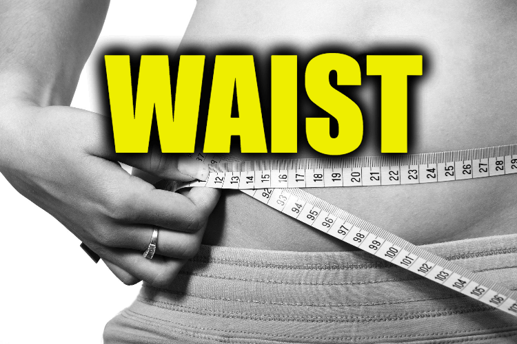 """Use Waist in a Sentence - How to use """"Waist"""" in a sentence"""