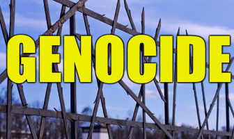 "Use Genocide in a Sentence - How to use ""Genocide"" in a sentence"