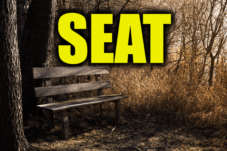 """Use Seat in a Sentence - How to use """"Seat"""" in a sentence"""