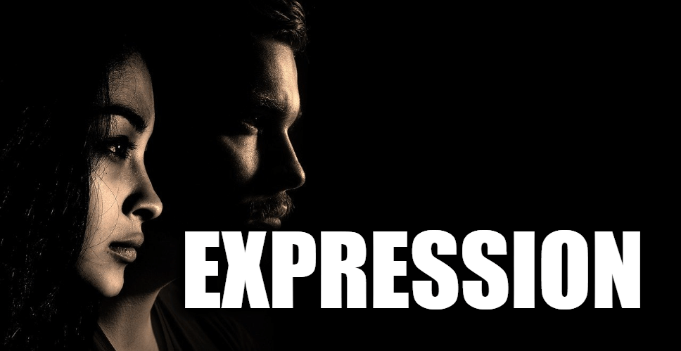 """Use Expression in a Sentence - How to use """"Expression"""" in a sentence"""