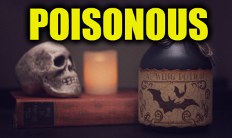 "Use Poisonous in a Sentence - How to use ""Poisonous"" in a sentence"