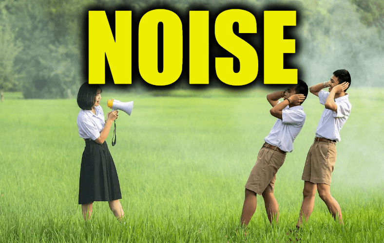 """Use Noise in a Sentence - How to use """"Noise"""" in a sentence"""