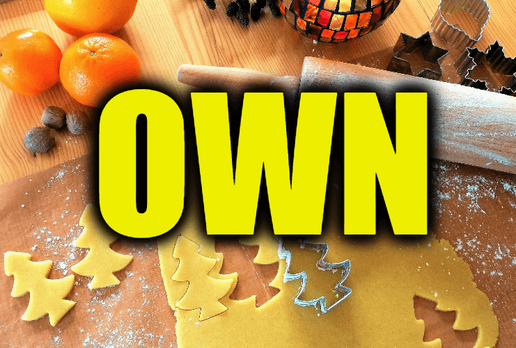 """Use Own in a Sentence - How to use """"Own"""" in a sentence"""