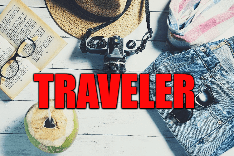 "Use Traveler in a Sentence - How to use ""Traveler"" in a sentence"
