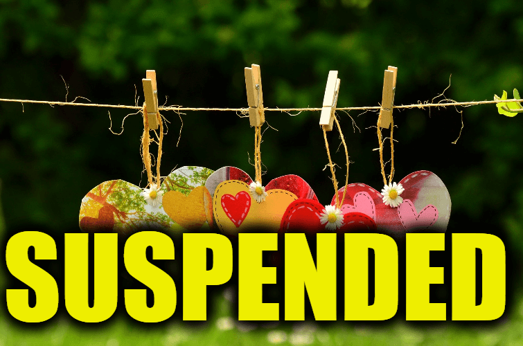 """Use Suspended in a Sentence - How to use """"Suspended"""" in a sentence"""