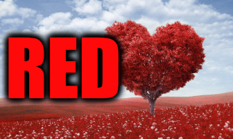 "Use Red in a Sentence - How to use ""Red"" in a sentence"