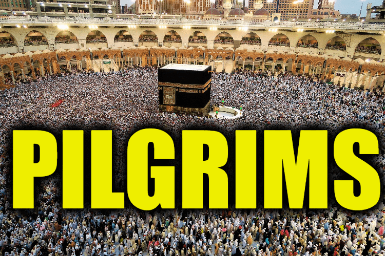 """Use Pilgrims in a Sentence - How to use """"Pilgrims"""" in a sentence"""