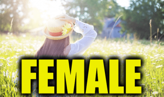 """Use Female in a Sentence - How to use """"Female"""" in a sentence"""