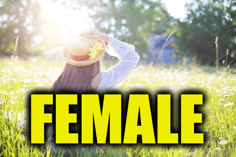 "Use Female in a Sentence - How to use ""Female"" in a sentence"