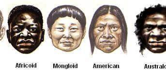 What is Caucasoid? Representative Caucasoid Populations