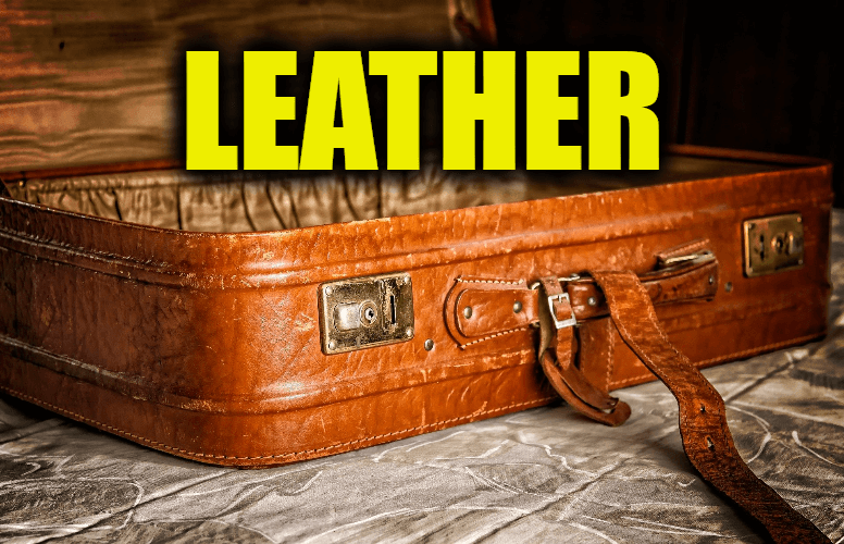 """Use Leather in a Sentence - How to use """"Leather"""" in a sentence"""