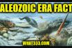 Paleozoic Era Facts