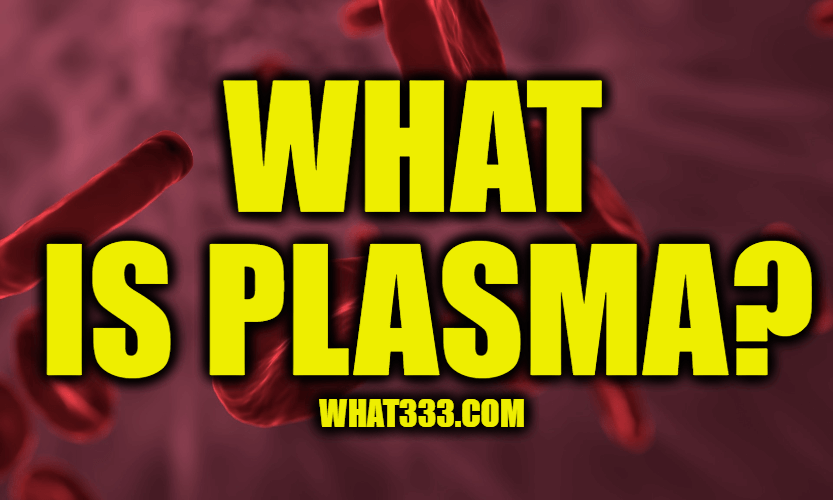What is Plasma? Information About Blood Plasma